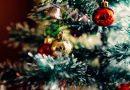 Weihnachtsbaum hat 2018 noch lange nicht ausgedient