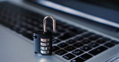 Lindner gibt sich kämpferisch gegen Internet-Zensur