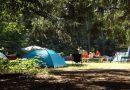 Camping in Deutschland immer beliebter – 2019 Rekordjahr
